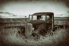 Waiting at the intersection.... (KPortin) Tags: truck lincolncounty easternwashington fields abandonedtruck htt nikwetplate