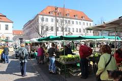 IMG_0778 (markusg2010) Tags: lüneburg stadt niedersachsen germany hanse hansestadt hanseatic lüneburgerheide altstadt deutschland backsteingotik roterosen