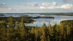 Lake Päijänne in Summer Evening (@Tuomo) Tags: summer lake june zeiss forest 35mm finland nikon jyväskylä observationtower päijänne korpilahti distagont235 oravivuori d700