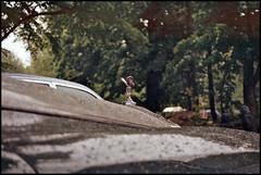 Beautiful Lady (tatraškoda) Tags: 35mm geotagged analogue f5 voiture car classic oldtimer film nikon automobile auto lakedistrict british spiritofecstasy museum motor mascot rollsroyce fujicolor c200 cumbria silver cloud
