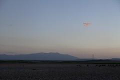 Paisajes mnimos y el Moncayo. Gallur, Espaa. (www.rojoverdeyazul.es) Tags: sunset sky espaa cloud sun sol night landscape atardecer noche spain horizon paisaje cielo autor alvaro bueno nube horizonte aragn moncayo gallur