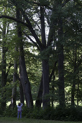 Kamera-67 at Kulla Manor (aixcracker) Tags: summer suomi finland july juli sommar kes lovisa loviisa heinkuu kulla kamera67 nikond3 tessjoki tesj
