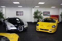 Hypercar Choices (MJParker1804) Tags: two black yellow tom silver quad ferrari exotic turbo showroom 164 choices bugatti comparison rare tone supercar hartley w16 supercars veyron scd v12 f50 hypercar supercardriver