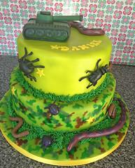 Camo Bugs Cake