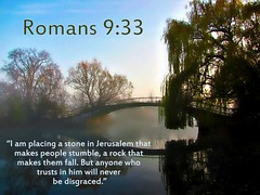 Romans 9:33 nlt (Bob Smerecki) Tags: life new love cup church true rock easter born high truth heaven king christ god shepherd spirit brother father ghost religion pray jesus lord christian mount holy moses again lamb bible alive commandments messiah risen salvation promise abba sanctuary tabernacle nations sabbath blessed romans redeemer righteousness almighty sins scriptures passover faithful inheritance oldtestament everlasting slain forgive baptised heals deciple crucified preist 933 apostle forgiven resserection strongtower mosthigh ofolives