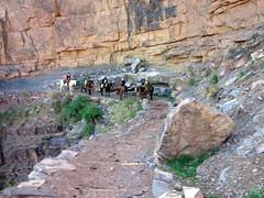 Grand Canyon Hike - 9:13am (bhotchkies) Tags: park arizona nationalpark grandcanyon grand canyon hike national southkaibab