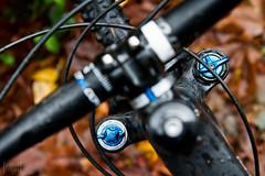 Fork Knobs (project-b) Tags: mountain bike giant mountainbike fox trance advanced sx 275 2014 talas 650b
