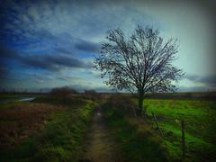 Winter Countryside Walk