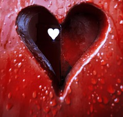 Just another bleeding heart...I  Copenhagen (HartwellPhotography) Tags: red detail rot water rain copenhagen denmark rouge blood heart ngc royal palace double dk raindrops bleeding scandinavia kobenhavn 1122mm amalienborgslot canoneosm
