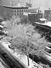 Broadway Snowfall (Ed Newman) Tags: new york city white snow black west side broadway upper and gothamist snowfall