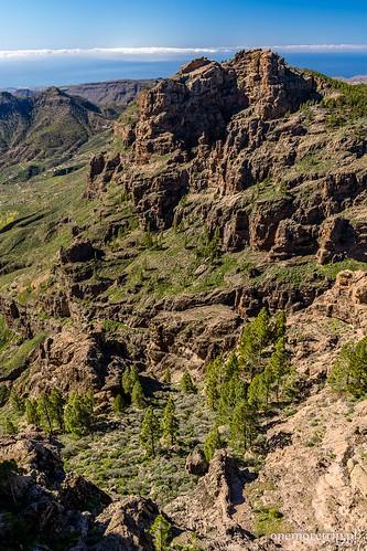 170205-1295-Pico de las Nieves_