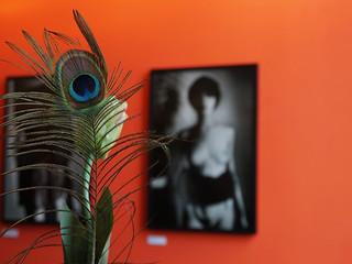 Ausstellung  von Karin Székessy