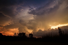 This was a storm (mariola aga) Tags: summer meadow evening sunset trees grass silhouettes sky stormyweather sun sunlight storm thunderstorm clouds nature thegalaxy cloudsstormssunsetssunrises