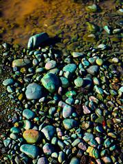 Strewn Rocks (Steve Taylor (Photography)) Tags: art digital blue colourful brown green stone rock water puddle newzealand nz southisland canterbury christchurch city cbd wet