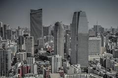 Tokyo Cityscape (someofmypics) Tags: tokyo cityscape adobelightroom japan desaturation nikond4