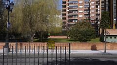 04-03-17 017 (Jusotil_1943) Tags: 040317 fences arboles entrearboles señales trafico pasodecebra sauce lloron