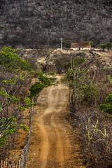 Sertão (felipe sahd) Tags: fazendaqueimadas pedrabranca ceará brasil sertãodesenadorpompeu nordeste caatinga semiárido