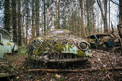Frog of the forest (Post-Mortem (Alexandre Katuszynski)) Tags: urbex urbanexploration ue urbexfrance abandoned abandonné carsgraveyard cargraveyard panhard cars voituresabandonnées cimetièredevoitures decay derelict decayed rusty rouille naturereclaimed lostplaces lowlight verlassen forgotten rotten explorationurbaine