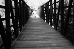Bridge in monotone (Photos By Clark) Tags: california canon2470 canon60d cities cowlesmountain locale location missiontrails northamerica places sandiego unitedstates where santee bridge metal wood lightroom nik silverefx bw convert