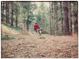 Push-biking through the forest. #selfportrait #mounttabor #mounttaborpark