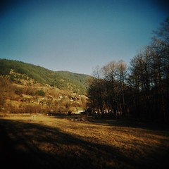 Zlatibor Field (sonofwalrus) Tags: holga film lomo lomography scan serbia europe zlatibor field trees