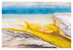 Natural art (Sandy Spaenhoven) Tags: blue yellow yellowstone national park bacteria bacterial nature natural art abstarct landscape volcanic wyoming