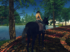 horse riding (Helena Moon) Tags: secondlife sl nature forest horse riding