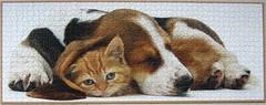 Tierische Freundschaft (Jane Burton) (Leonisha) Tags: puzzle jigsawpuzzle cat chat katze dog hund ravensburger