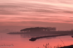 pink sunsets (paolotrapella) Tags: pink sunsets tramonti rosa sky clouds water