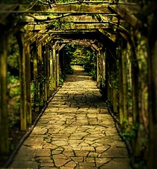 I want to walk beside you  Nowhere I have ever been... (Insideman69) Tags: pathways mysterious