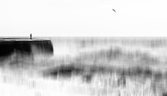 Cobb II (Bruus UK) Tags: lymeregis cobb harbour swell seascape abstract bird gull person alone solo figure coast sea marine storm blackwhite bw rough highkey danger reckless
