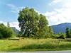 Inzeller Filzen (Michael Keyl) Tags: mountains berge alpen alps bayern bavaria inzell bayerischealpen outdoor hiking wandern