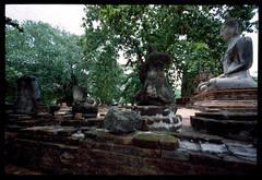 20140810_0117_SWH15mm_M6_Ayutthaya_E200_TH_s (*Leiss) Tags: 2014 swh 15mm leica m6 ayutthaya thailand th e200