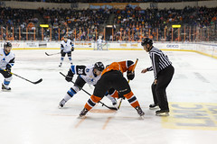 "Missouri Mavericks vs. Wichita Thunder, March 25, 2017, Silverstein Eye Centers Arena, Independence, Missouri.  Photo: © John Howe / Howe Creative Photography, all rights reserved 2017. • <a style=""font-size:0.8em;"" href=""http://www.flickr.com/photos/134016632@N02/33571550501/"" target=""_blank"">View on Flickr</a>"