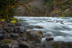 South Fork McKenzie River (roe.nate) Tags: river water stone trees forest longexposure oregon pnw moss