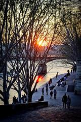 Premiers soirs de printemps (Calinore) Tags: france paris city ville quais dock river fleuve seine sunset cronwd people silhouette foule pontdesarts eveing soir crepuscule