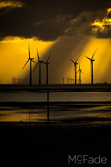 Windfarms on the Mersey 503 - Liverpool Crosby (ade_mcfade) Tags: leeds yorkshire west photographer mcfade ade wilson canon beach cathedral city cloudy gormley lancashire liverpool merseyside scouser statues sunset
