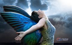 Carlos Atelier2 - Mulher Borboleta (Carlos Atelier2) Tags: carlos atelier2 mulher borboleta noite azul verde