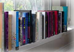 21 - Artistic (Fantasy) (ethnosax) Tags: dogwood52 dogwoodchallenge books fantasy novels fiction hardcover paperback lewis tolkien lengle macdonald window