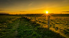 Spring Sunset (Mark Heslington Photography) Tags: landscape scarborough north yorkshire england uk united kingdom clifftop sun starburst fence panorama panoramic leading line leadin sony a7 canon 1635mm lee filter hard grad
