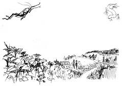 1830_2 (Мария Юрист) Tags: 365 brushpen ручкакисть иллюстрация illustration ink чернила художка животные animals insects насекомые пейзаж landscape