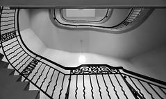 (frankhurkuck) Tags: banisters treppe stairs staircase stairway geländer hannover niedersachsen nds norddeutschlnd germany landeshauptstadt rathaus friedrichswall neuesrathaus townhall treppengeländer schwarzweis blackandwhite railing