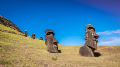 Moai at the Quarry (Lee Edwin Coursey) Tags: history chile 2017 moai quarry travel prehistoric stoneage island easterisland statues southamerica polynesia rapanui pacific