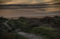 (Glen Parry Photography) Tags: nikon d7000 glenparryphotography landscape walsden todmorden clouds sigma sigma1020mm grass stoodleypike walking moorland moor susnset