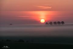 OTTTTT (Di_Chap) Tags: arbres trees ciel sunrise vallée campagne brume jaunayclan nouvelleaquitaine france fr