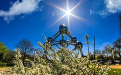 Atomium fleuri (YᗩSᗰIᘉᗴ HᗴᘉS +5 000 000 thx❀) Tags: atomium fleurs flowers fleuri belgium belgique bélgica sky bluesky sun clouds contrejour hensyasmine bruxelles brussels