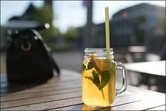 "Green Tea / ""Established 1898"" (saxmaxPix) Tags: greentea grüntee"
