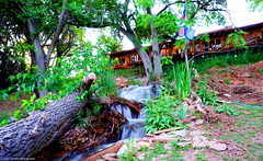 Backyard waterfall of the Airbnb lodging I stayed at (o10daw) Tags: waterall backyard longexposure arizona usa water river photography