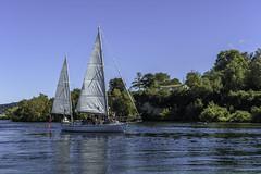 Barbary in the Channel (- Jan van Dijk -) Tags: taupo waikato newzealand nz barbary laketaupo boat sail zeil sailingboat current