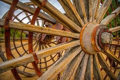 Borax Wagon Wheel Detail (William Horton Photography) Tags: boraxmuseumatfurnacecreek california deathvalley deathvalleynationalpark furnacecreek mojavedesert nationalpark boraxwagon desert wagonwheel